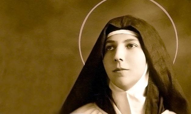 O Carmelo no dizer das Carmelitas: Teresa dos Andes