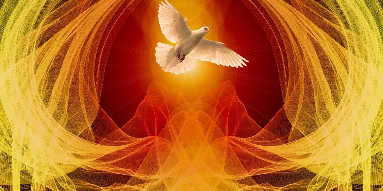 Ascensão e o Pentecostes na vida de Maria e na nossa